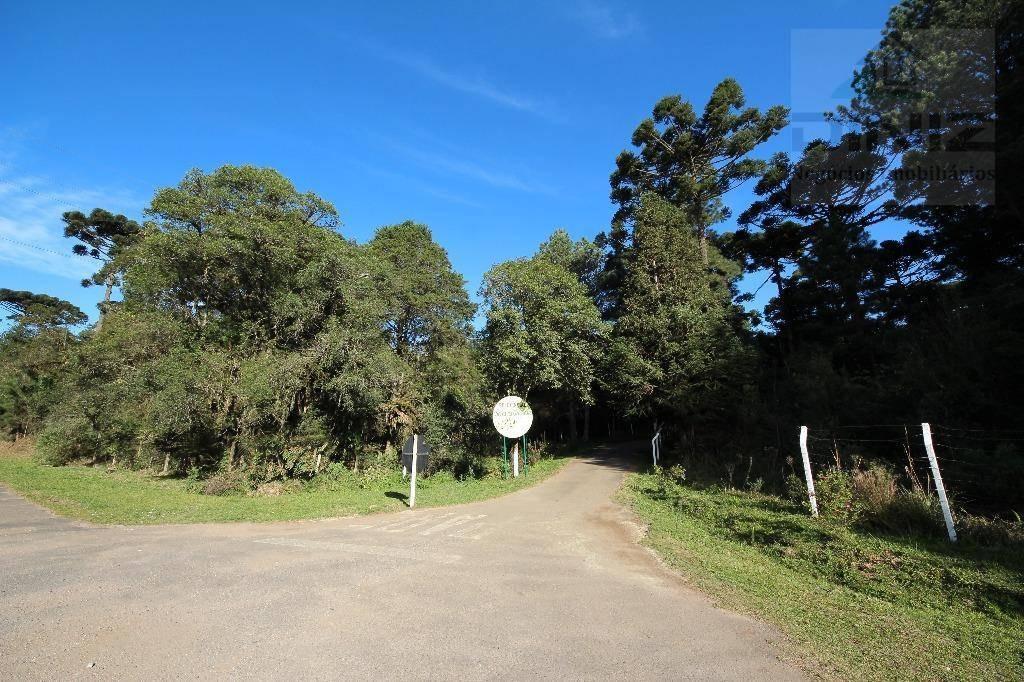 chácara no condomínio serra da graciosa, bairro campininha, quatro barras/pr. área 15.000m². - ch0010