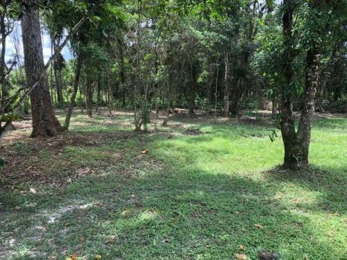 chácara no parque vergara, em itanhaém, litoral sul de sp!