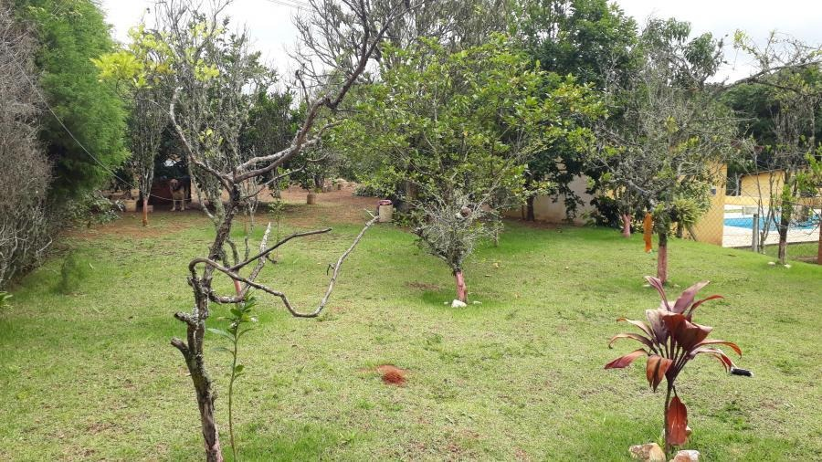 chácara para venda em ibiúna, ibiúna - 239_2-995504