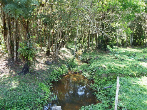 chácara plaina bem localizado rico em água