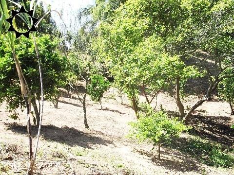chácara rural em ibiuna - sp, do cupim - ch00160