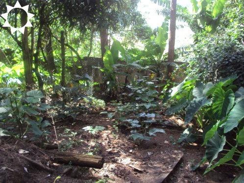 chácara rural em itapevi - sp, jardim vitapolis - ch00180