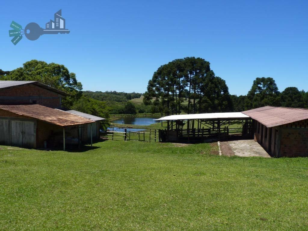 chácara rural à venda, zona rural, mandirituba - ch0002. - ch0002