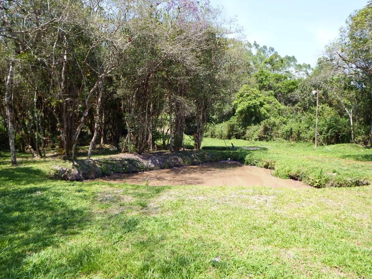 chácara semi plaina c 10.000  m² nascente