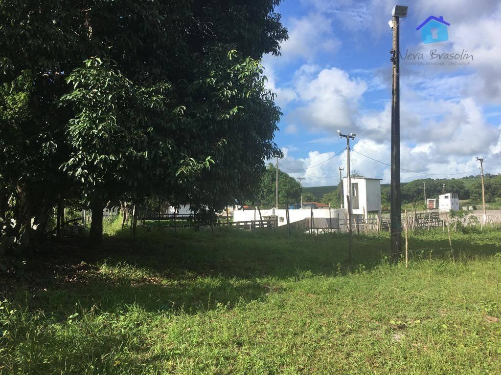 chácara à venda, 20000 m² por r$ 180.000 - pituaçu - conde/pb - te0674