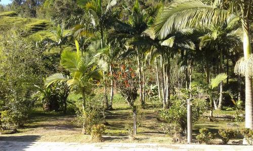 chácara à venda, 65000 m² por r$ 1.050.000,00 - centro - são pedro de alcântara/sc - ch0024