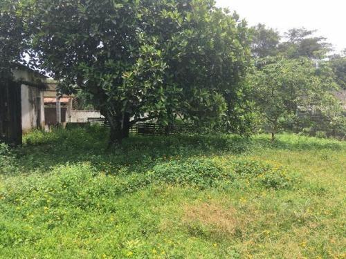 chácara à venda  jardim  palmeiras, itanhaém, ref. c0211 l c