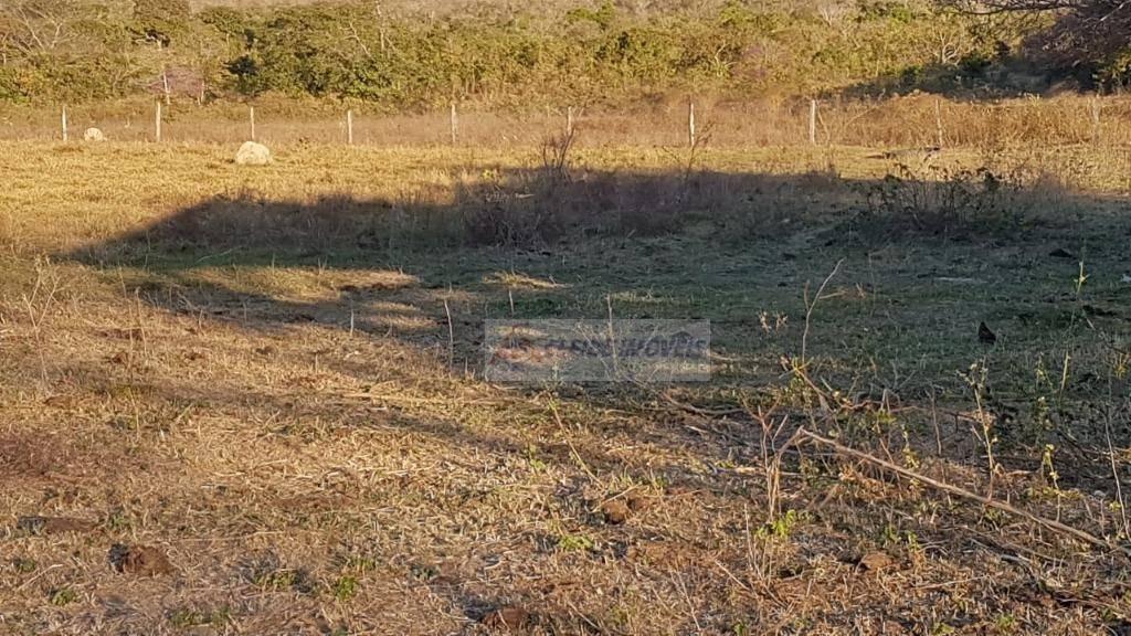 chácara à venda por r$ 800.000,00 - 200 km de cuiabá- alto do paraguai/mt - ch0050