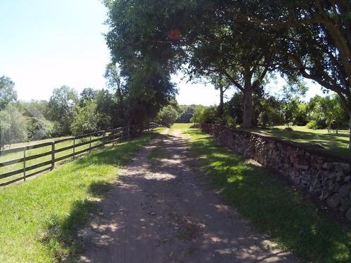 chacara/fazenda/sitio - arroio grande - ref: 216173 - v-216173