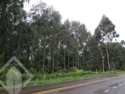 chacara/fazenda/sitio - centro - ref: 118547 - v-118547