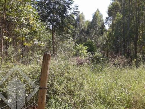 chacara/fazenda/sitio - centro - ref: 153433 - v-153433