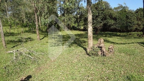 chacara/fazenda/sitio - centro - ref: 188959 - v-188959