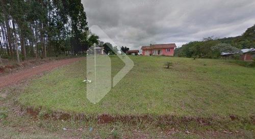 chacara/fazenda/sitio - centro - ref: 193535 - v-193535