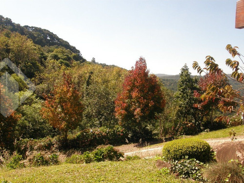 chacara/fazenda/sitio - centro - ref: 216137 - v-216137