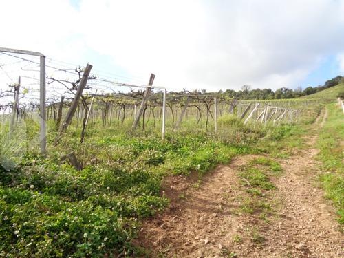 chacara/fazenda/sitio - sao valentin - ref: 203107 - v-203107