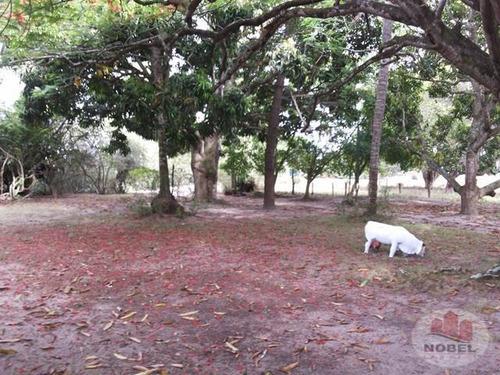 chácara/sítio  com 3 dormitório(s) localizado(a) no bairro papagaio em feira de santana / feira de santana  - 2391