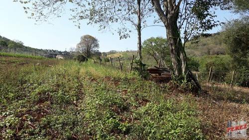 chácaras_sítios_fazendas para venda - 13650.3245