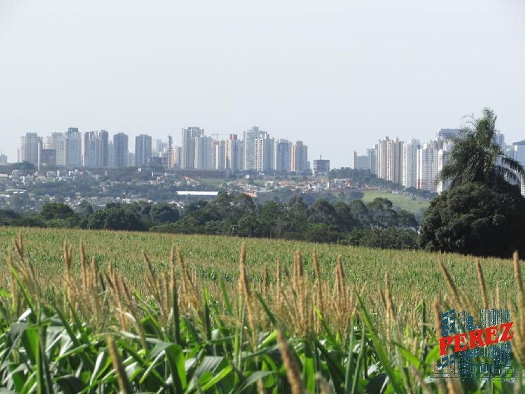 chácaras_sítios_fazendas para venda - 13650.3534