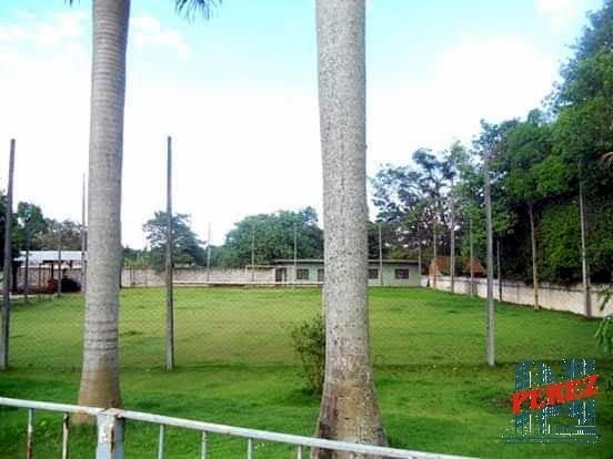chácaras_sítios_fazendas para venda - 13650.5294