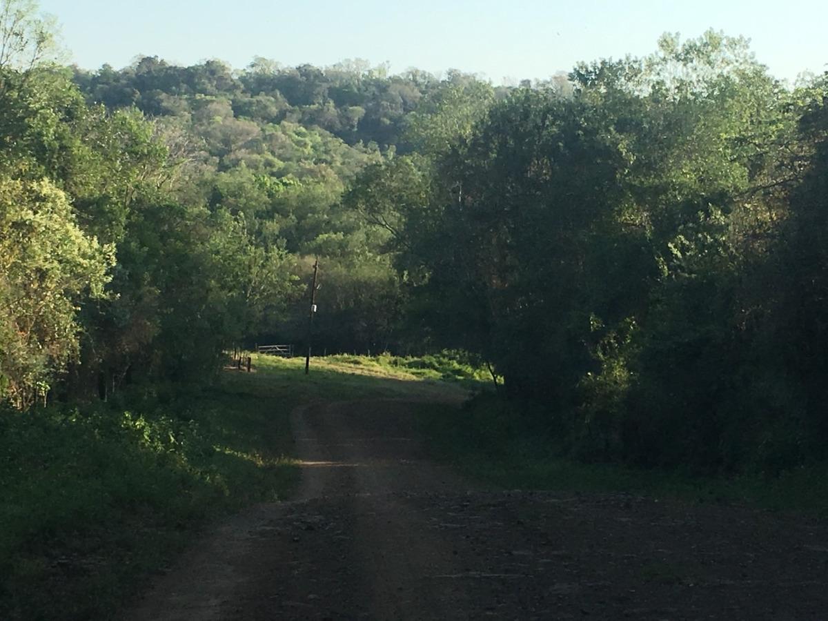 chacra 16has  selva 100% y arroyo - misiones oportunidad!!!!