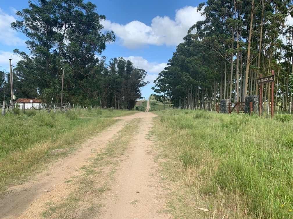 chacra 5 hectáreas por ruta 8 vieja kilómetro 44