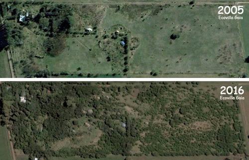 chacra 5000m2 vivienda productiva forestal eco turismo lote