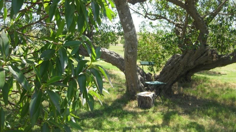 chacra a la venta, 30 hectáreas, rincón de josé ignacio