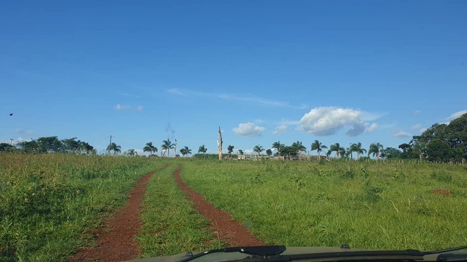 chacra con tierra virgen en campo viera-misiones - rn