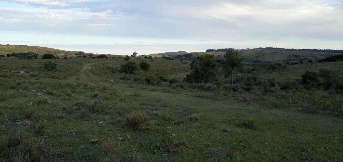 chacra de 10 hectáreas con arroyo a pocos km de ruta 60