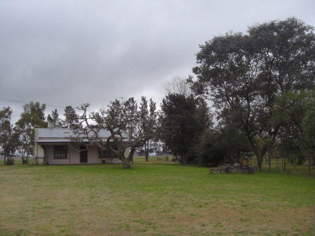 chacra de 10 hectáreas en la estanzuela. ref: 2.022