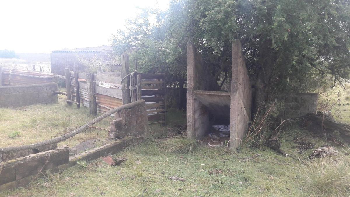 chacra de 3 hectáreas con casa sobre ruta