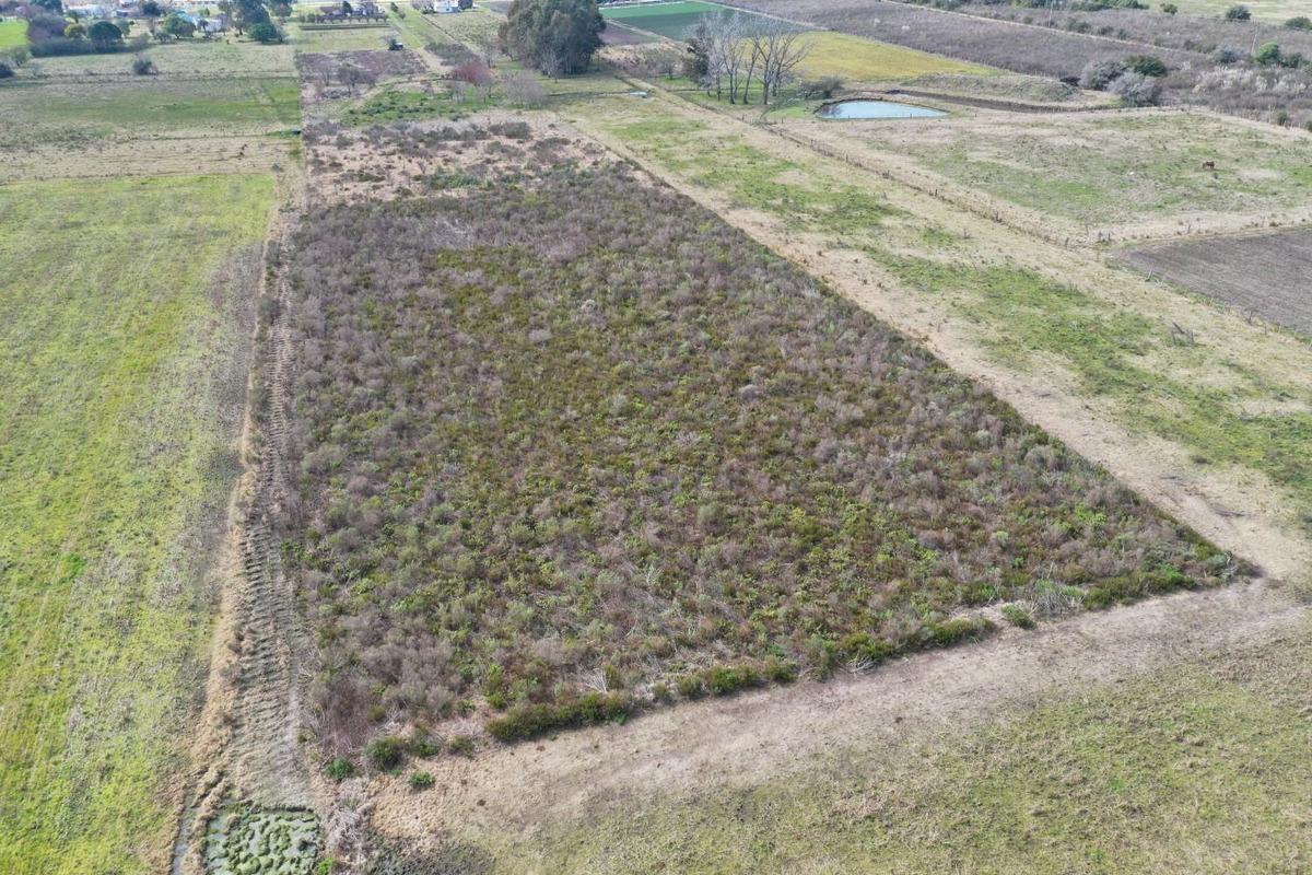 chacra de 3 hectáreas muy proxima a canelones