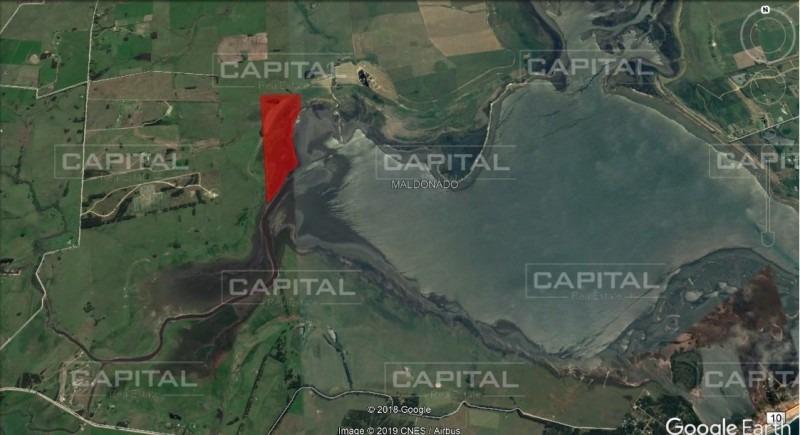 chacra de 30 hectareas sobre laguna de jose ignacio en venta- ref: 27709
