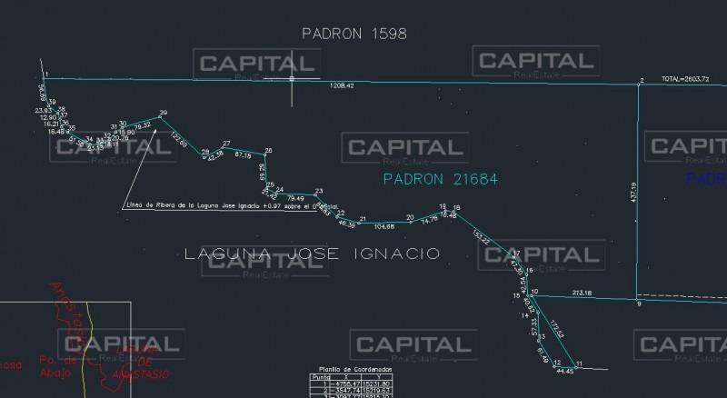 chacra de 30 hectareas sobre laguna de jose ignacio en venta-ref:27709