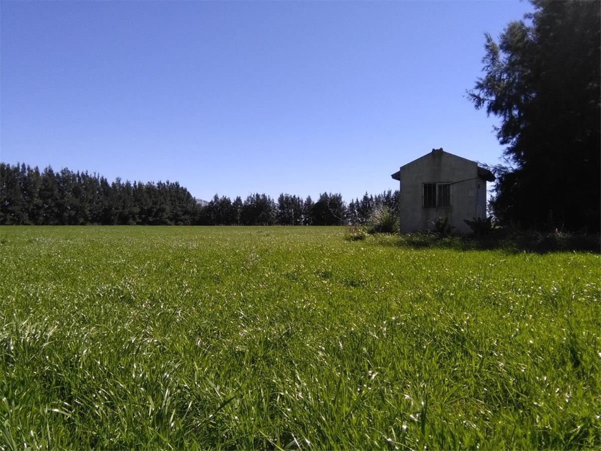 chacra de 8 hectáreas en venta
