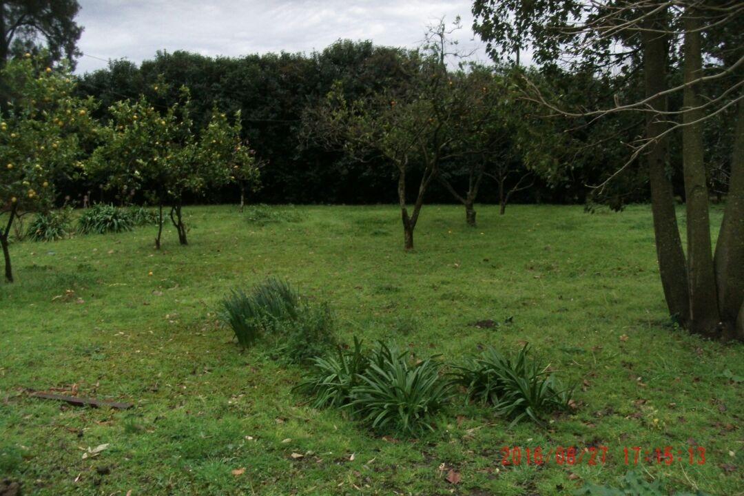 chacra de 8 hectáreas excelente ubicación sobre autopista***