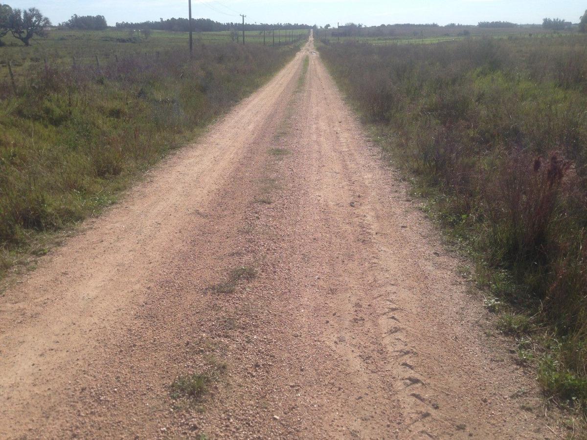 chacra de casi 7 hectáreas a buen precio