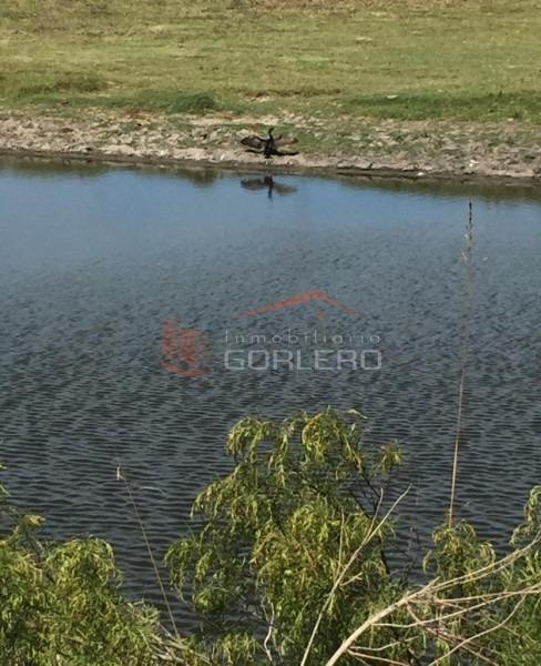 chacra en uruguay, laguna del sauce, ruta 12, las vertientes- ref: 25354