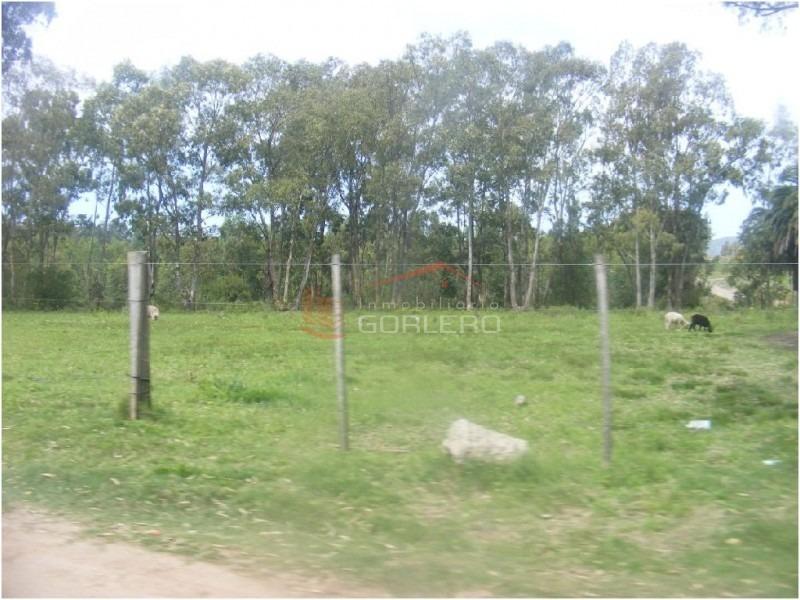chacra en uruguay, las flores- ref: 21348