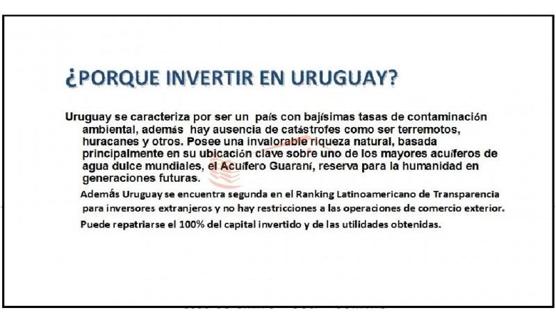 chacra en uruguay, punta del este, laguna de los cisnes- ref: 21483