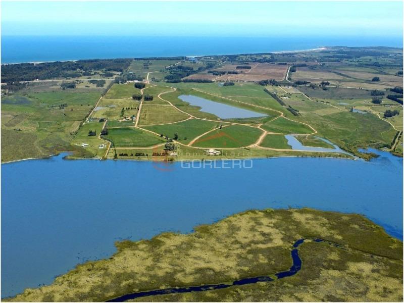 chacra en uruguay, punta del este, laguna de los cisnes- ref: 21515