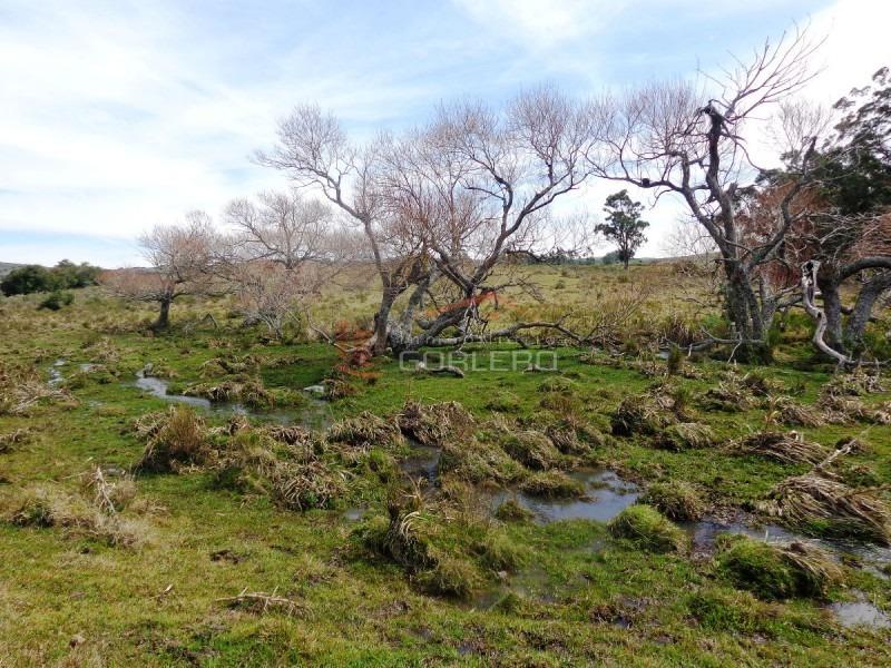 chacra en uruguay , punta del este, ruta 12, pueblo edén- ref: 21267