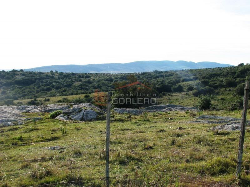 chacra en uruguay, punta del este, ruta 39-  oferta!- ref: 20966