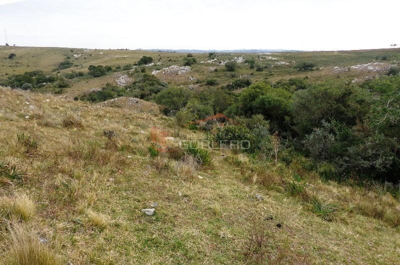 chacra en uruguay, ruta 12 a 24 km de pueblo edén- ref: 24877