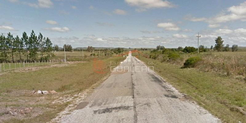 chacra en uruguay, ruta 12 con casa- ref: 25716