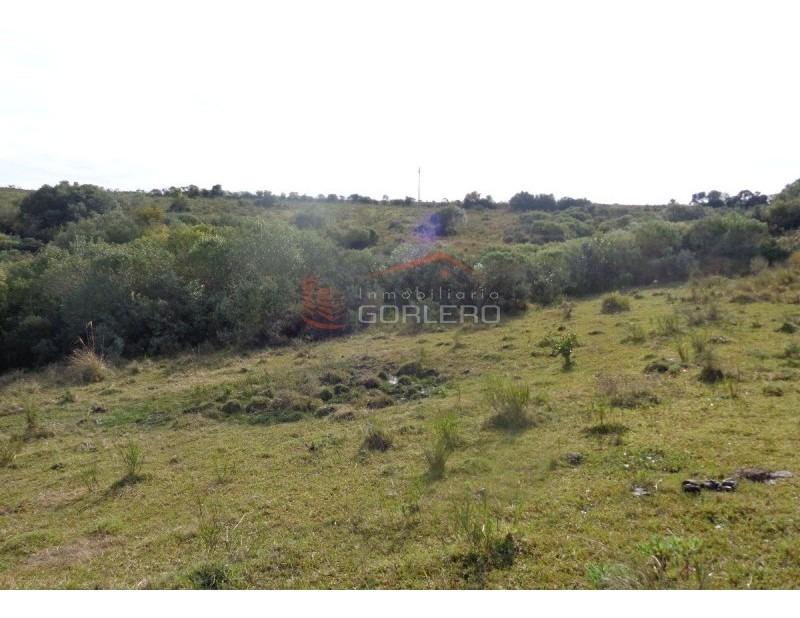 chacra en uruguay, ruta 12, pueblo edén- ref: 20853