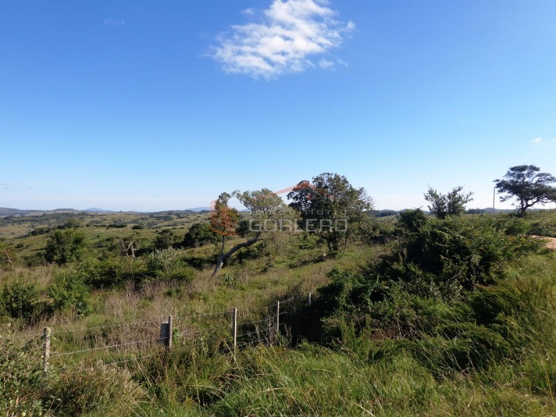 chacra en uruguay, ruta 12, pueblo edén- ref: 21254