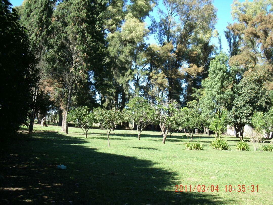chacra  jauregui lujan 8 hectáreas con construcción****