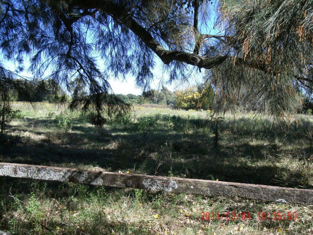 chacra  jauregui lujan 8 hectáreas sobre colectora****