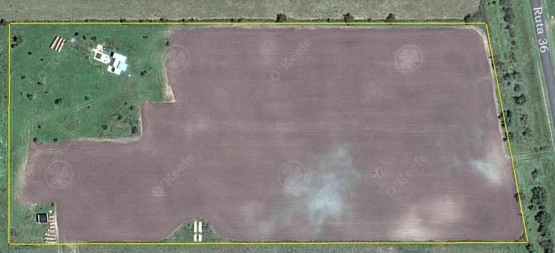 chacra productiva sobre ruta 36 - suelos agrícolas